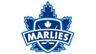 Game #1: Toronto Marlies 4 vs. Bridgeport Sound Tigers 1