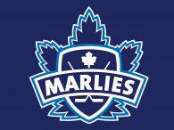 Game #2: Toronto Marlies 3 vs. Bridgeport Sound Tigers 0